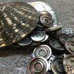 Dalla madreperla più pregiata le nostre collezioni di bottoni